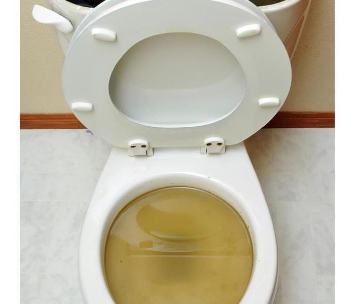 Overflowing broken toilet