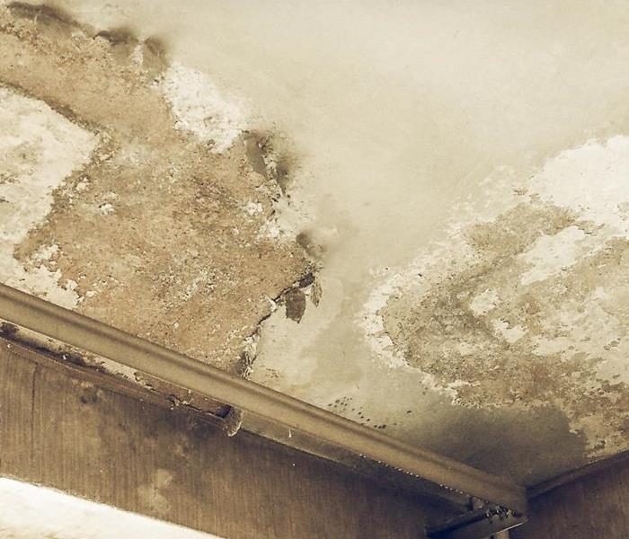 Commercial How To Prevent Mold by Protecting Your Building From Ice Dams