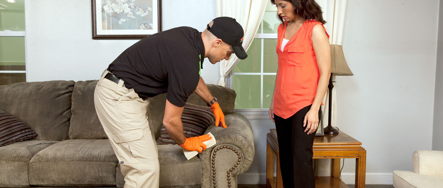 Buford, GA carpet upholstery cleaning